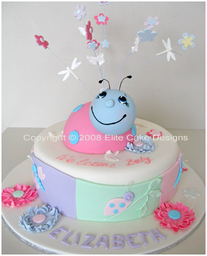 Lady Bug Baby Shower Christening Cake