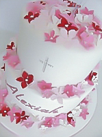 Butterflies Blossoms Christening Cake for girls