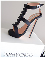 Jimmy Choo Stiletto birthday cake