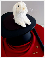 magician's hat novelty cake